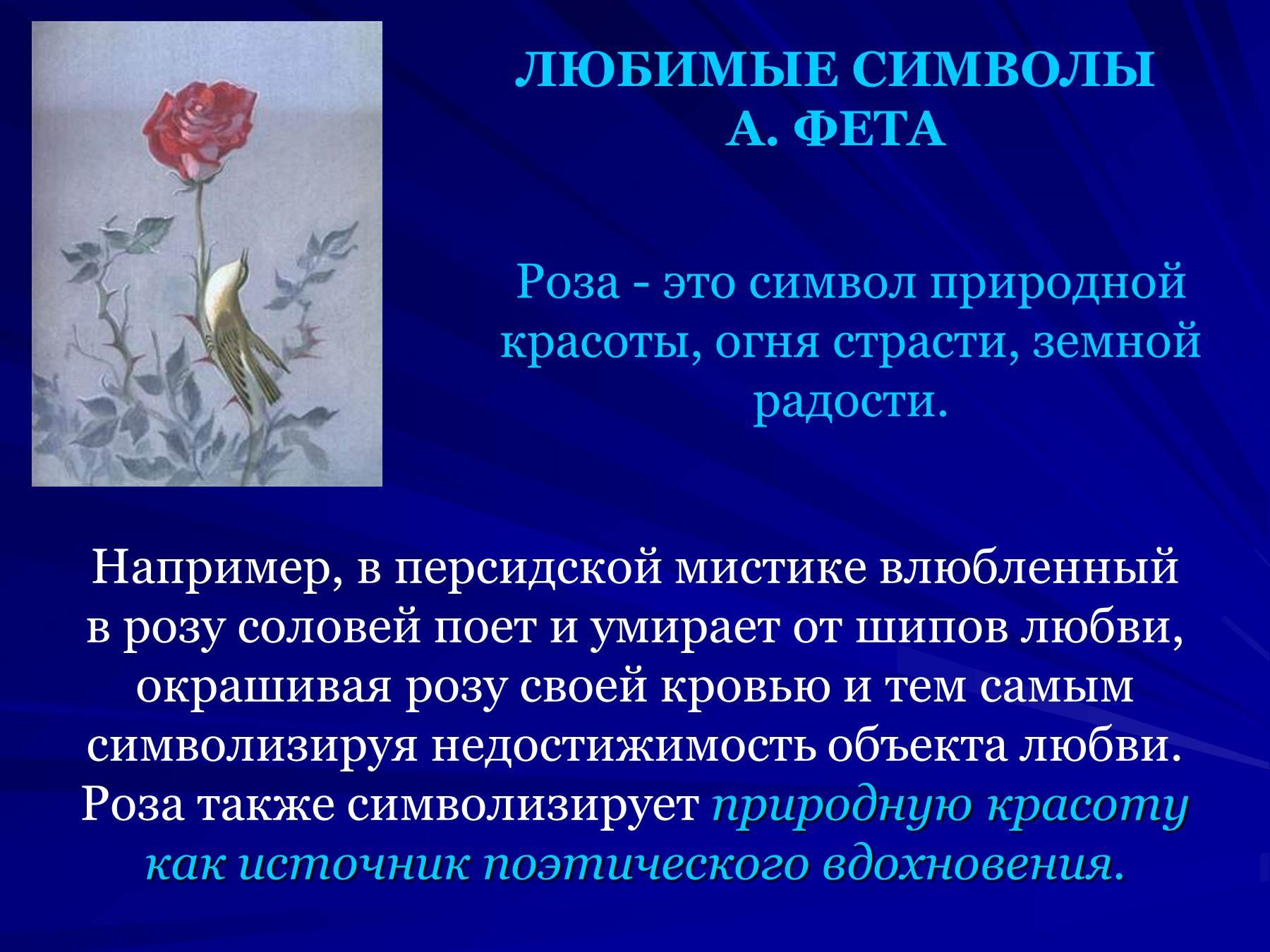 Цитаты о поэзии фета