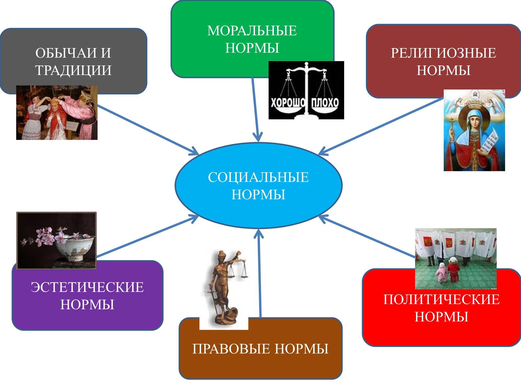 Схема социальных норм 7 класс