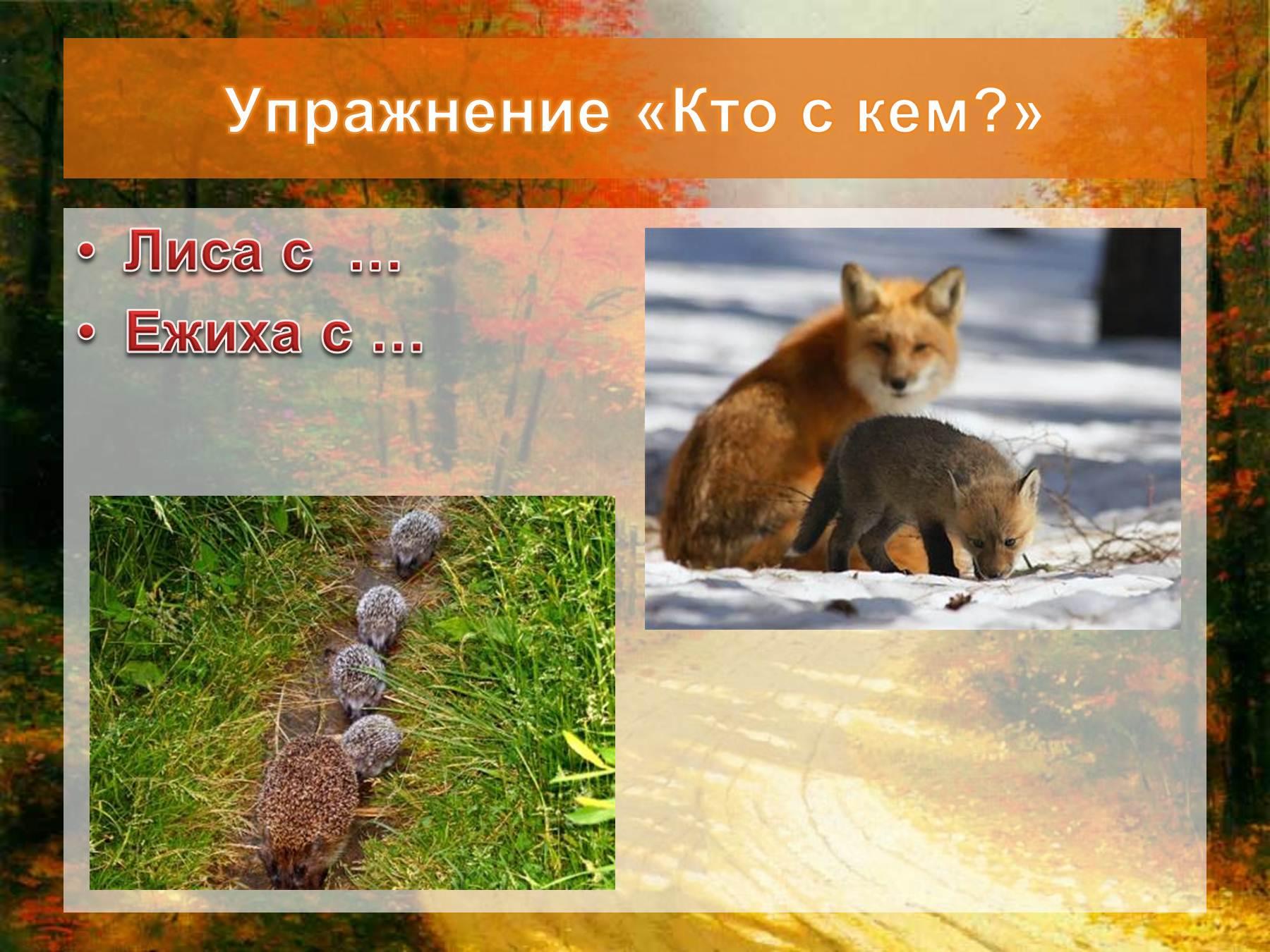 стене покупке дикие животные урала фото и описание доктор варун подал