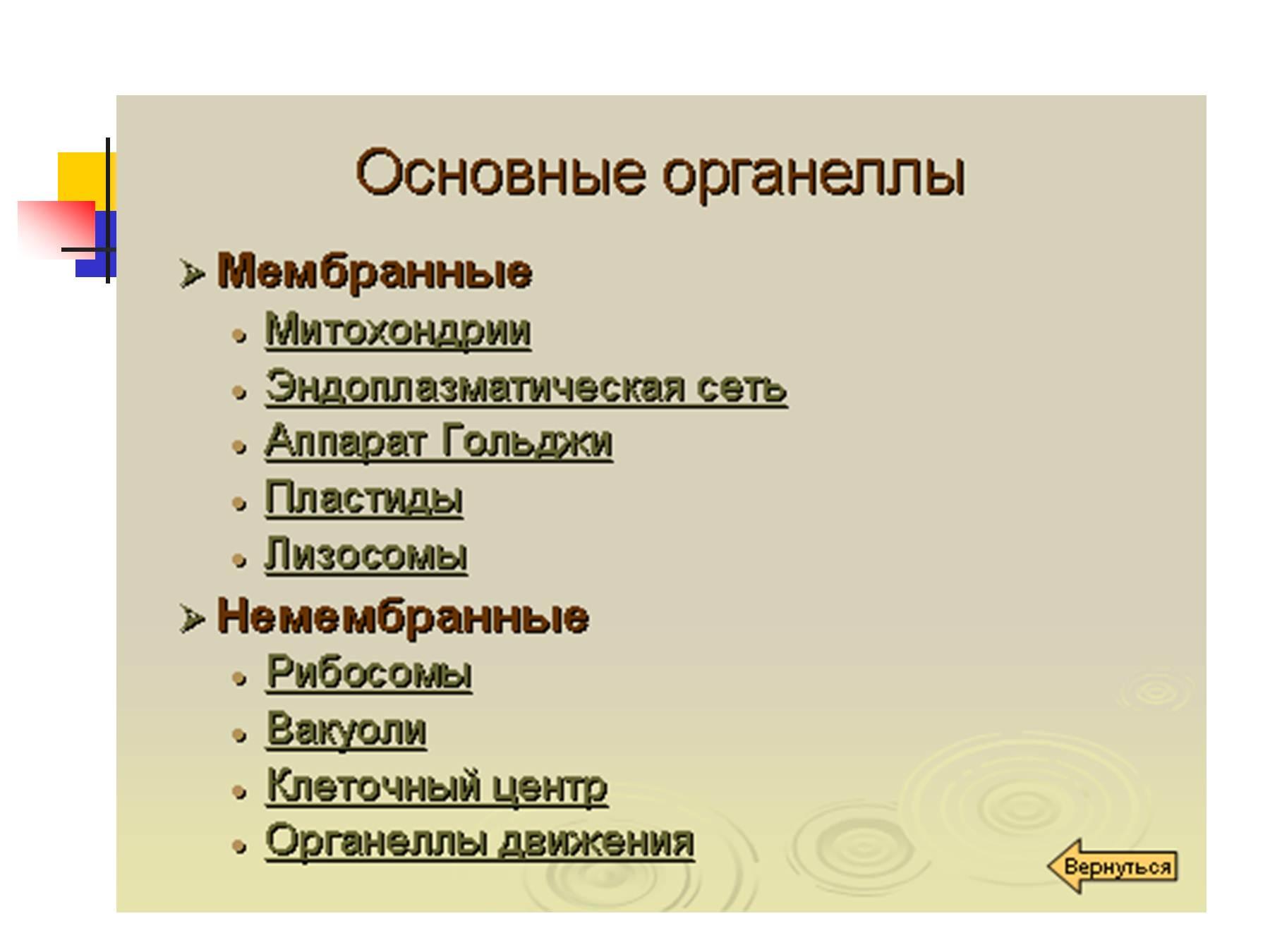 презентация по функции