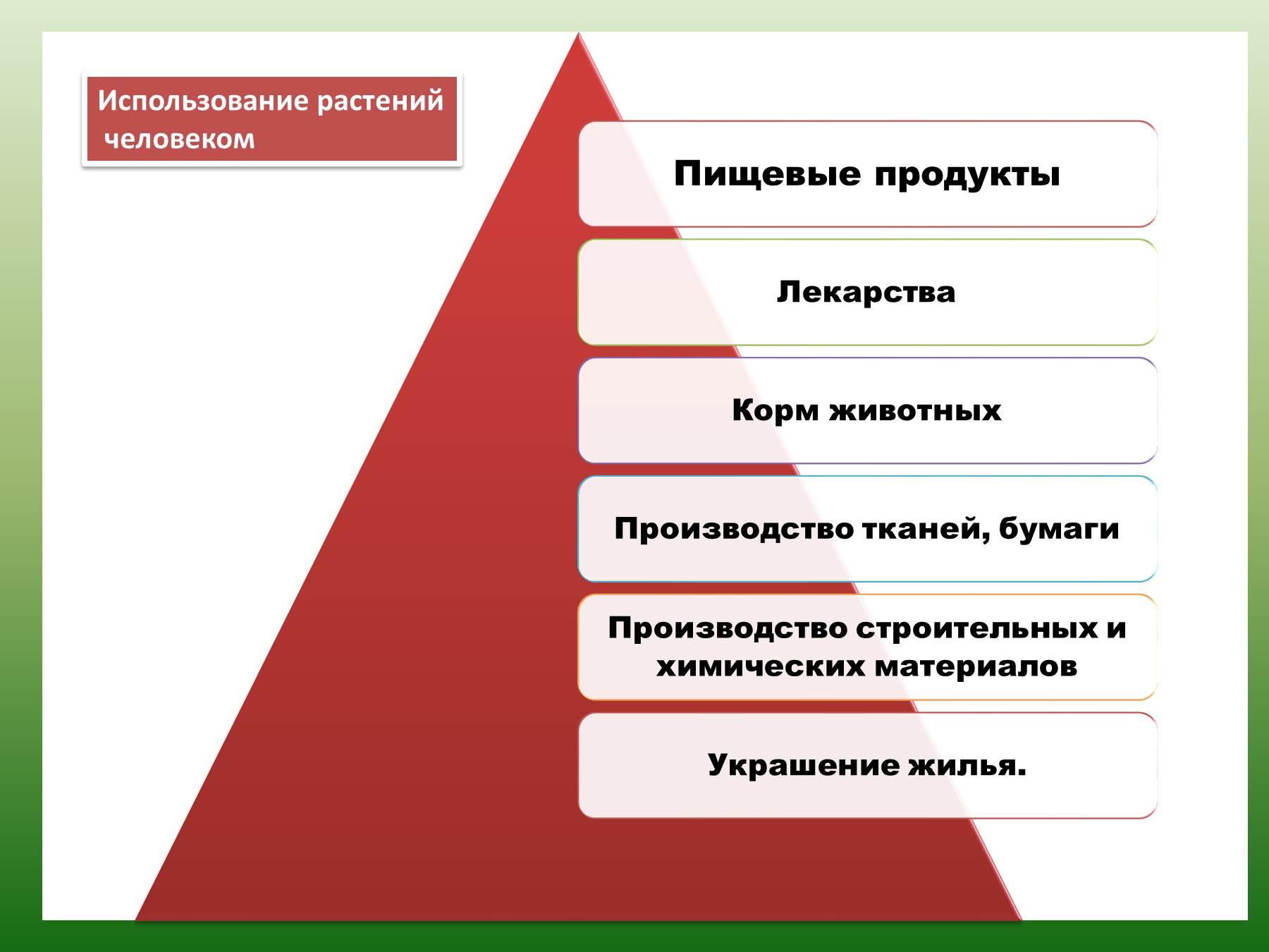 Схема использования растений человеком