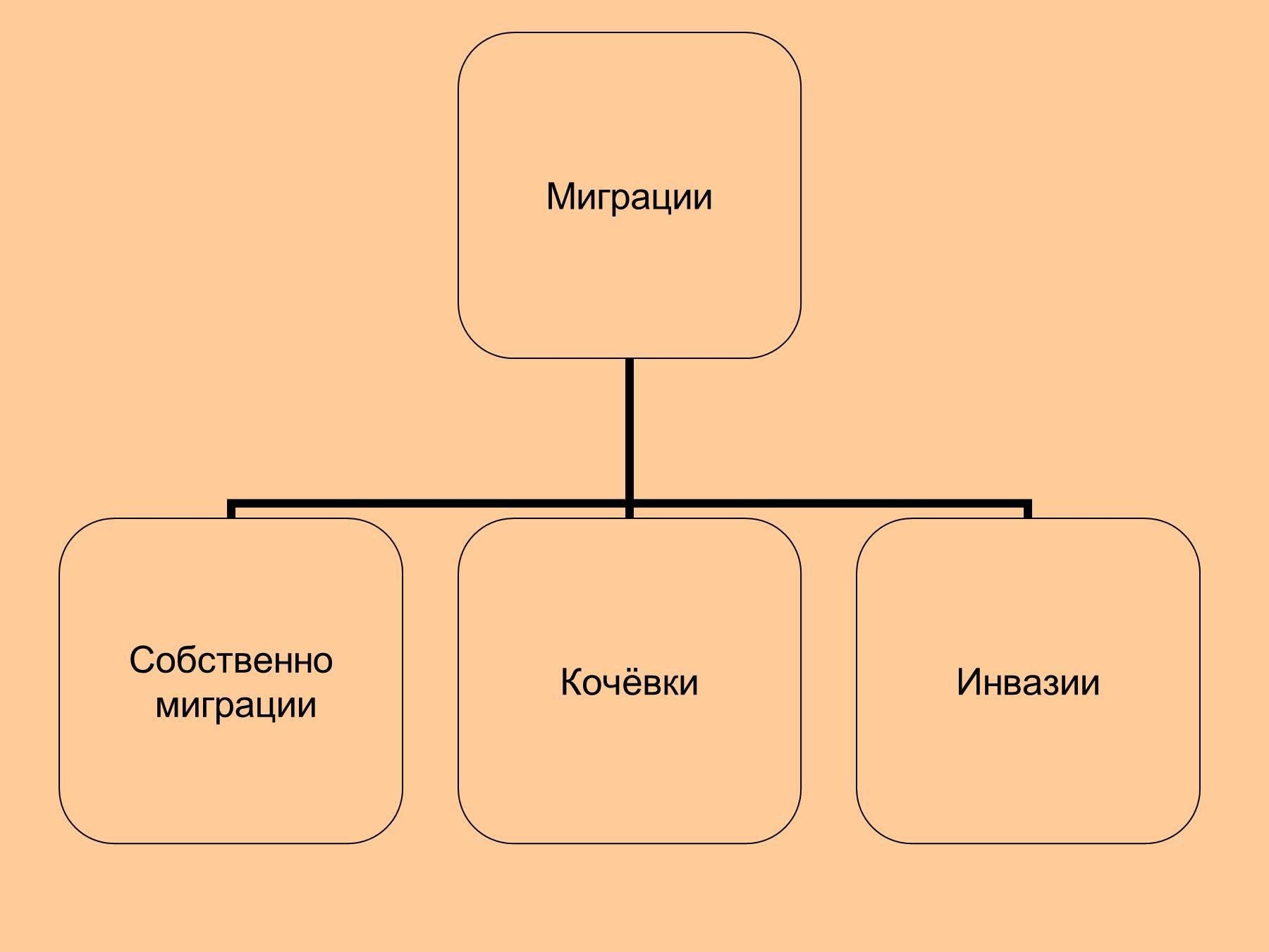 презентация по биологии на тему происхождение животных