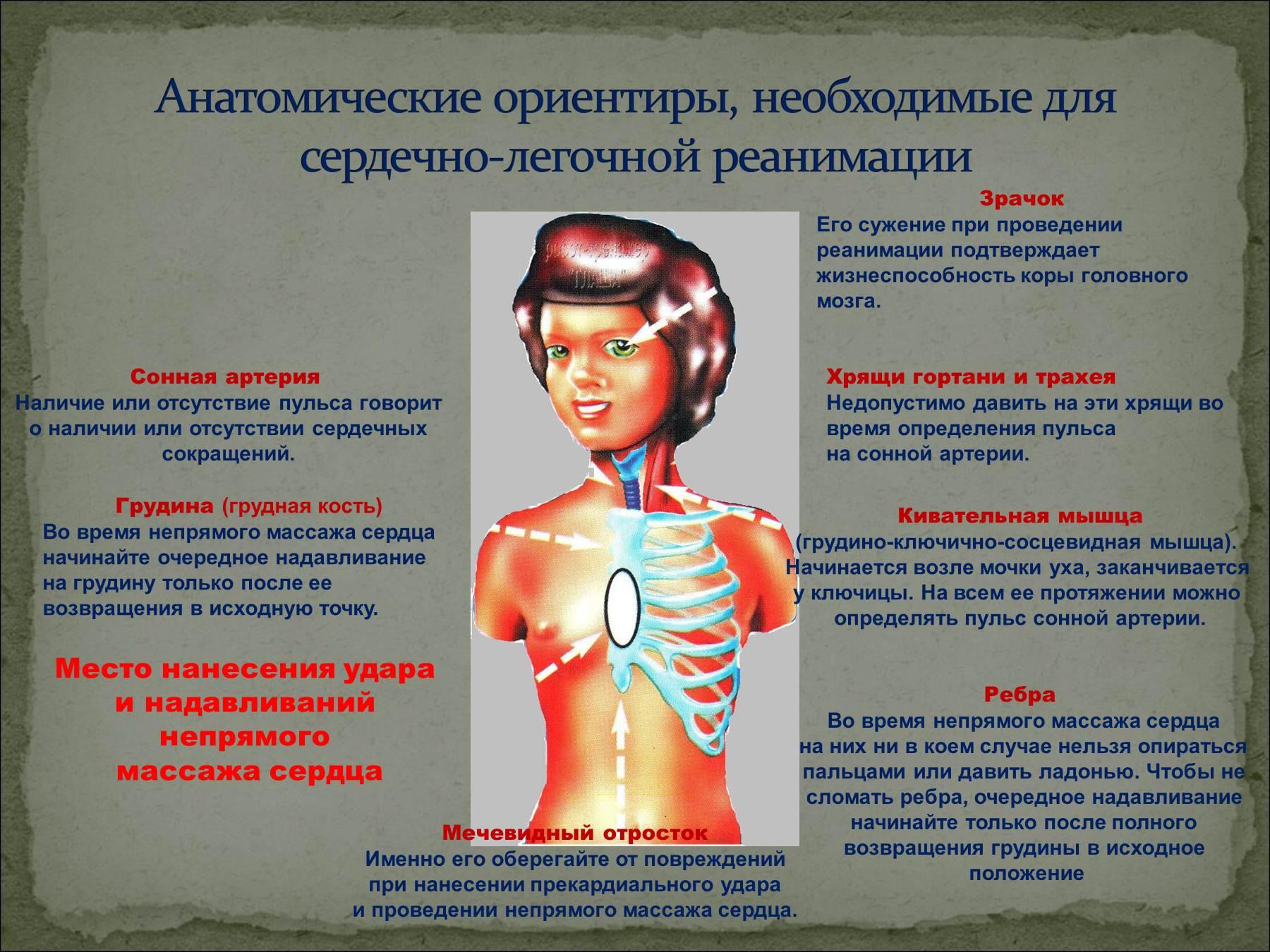 презентации по основам безопасности жизнедеятельности
