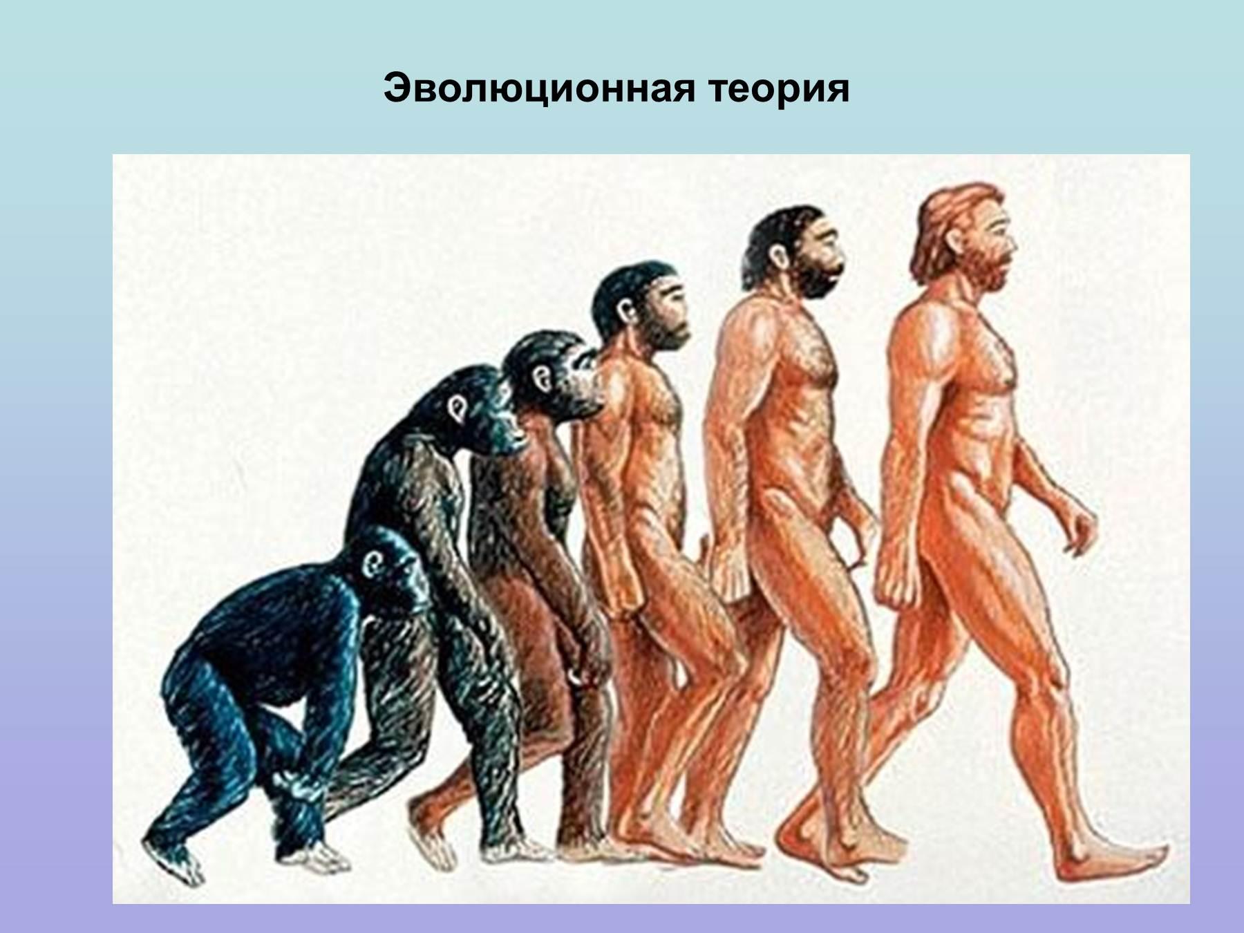Рисунки подтверждающие инопланетную теорию происхождения человека 3