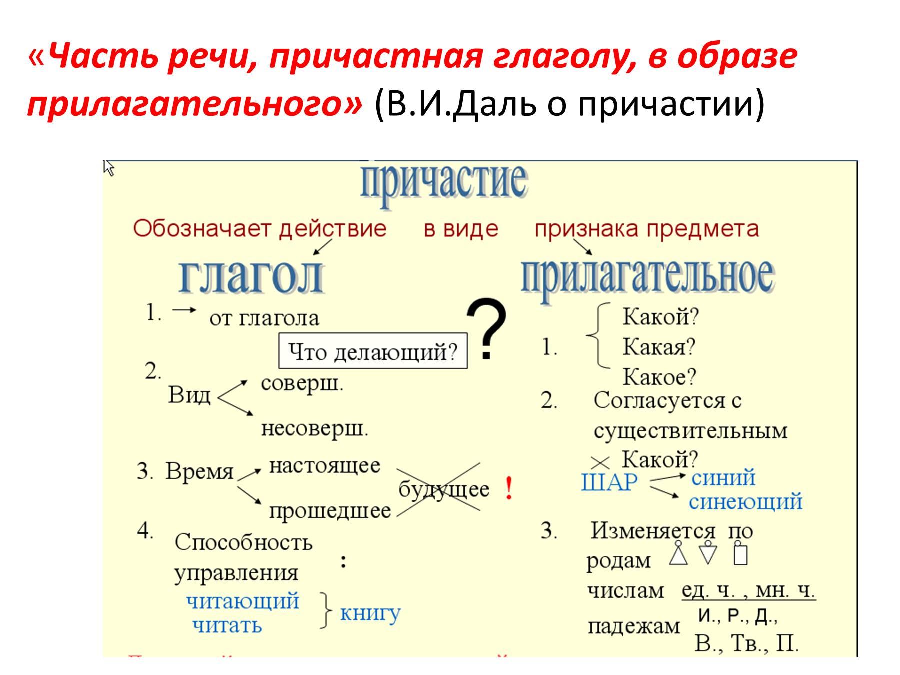 Опорные схемы по русскому 7 класс