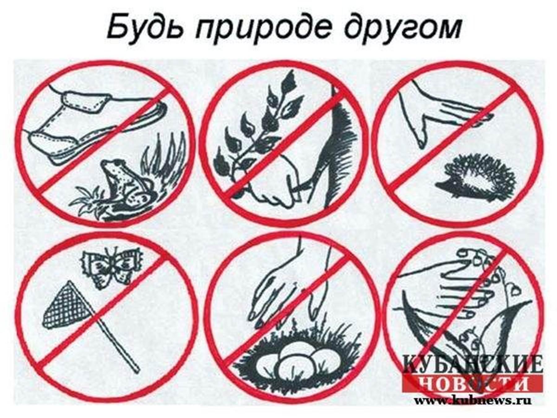 Сохранение здоровья на дороге плакат 25 фотография