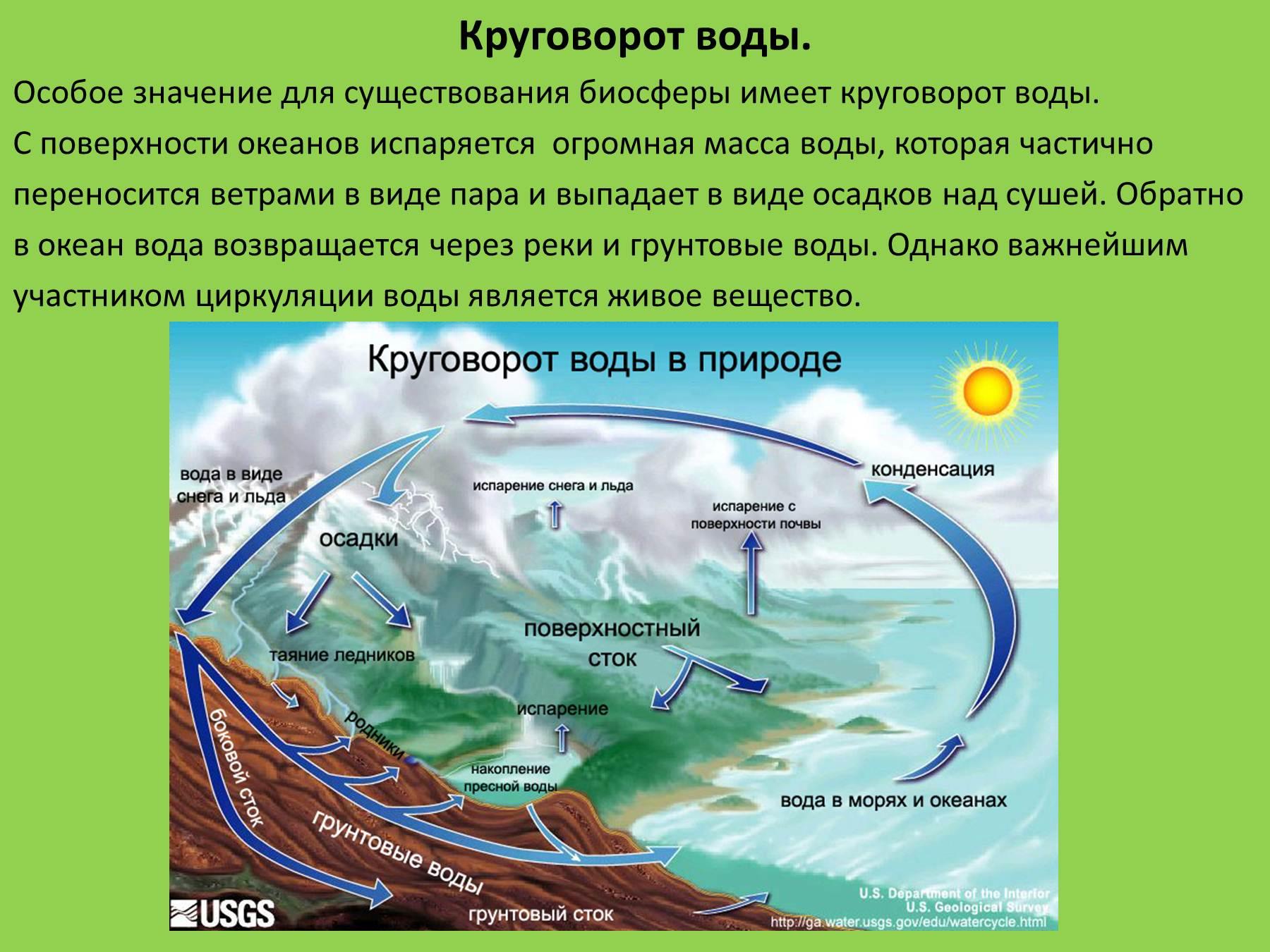 Схема круговорот воды в биосфере