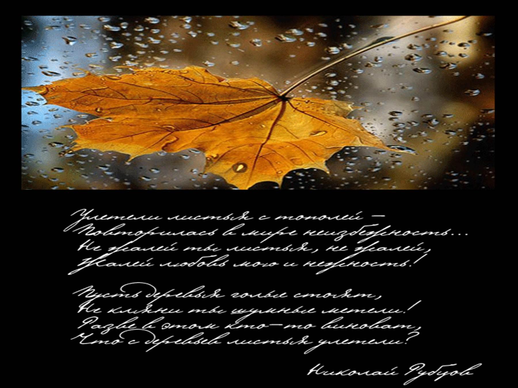 Стих рубцова улетели листья