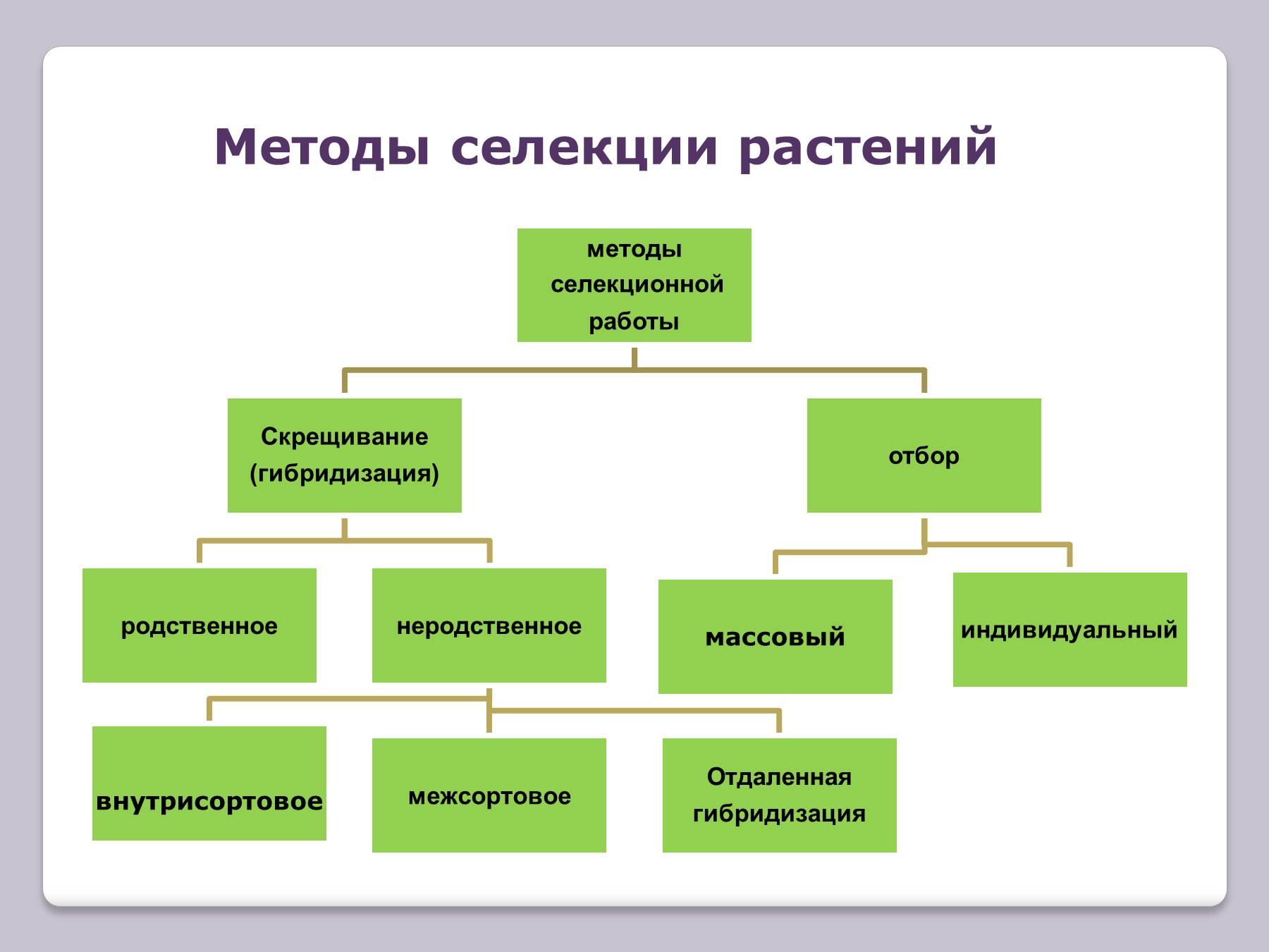 Типы схем и их значение