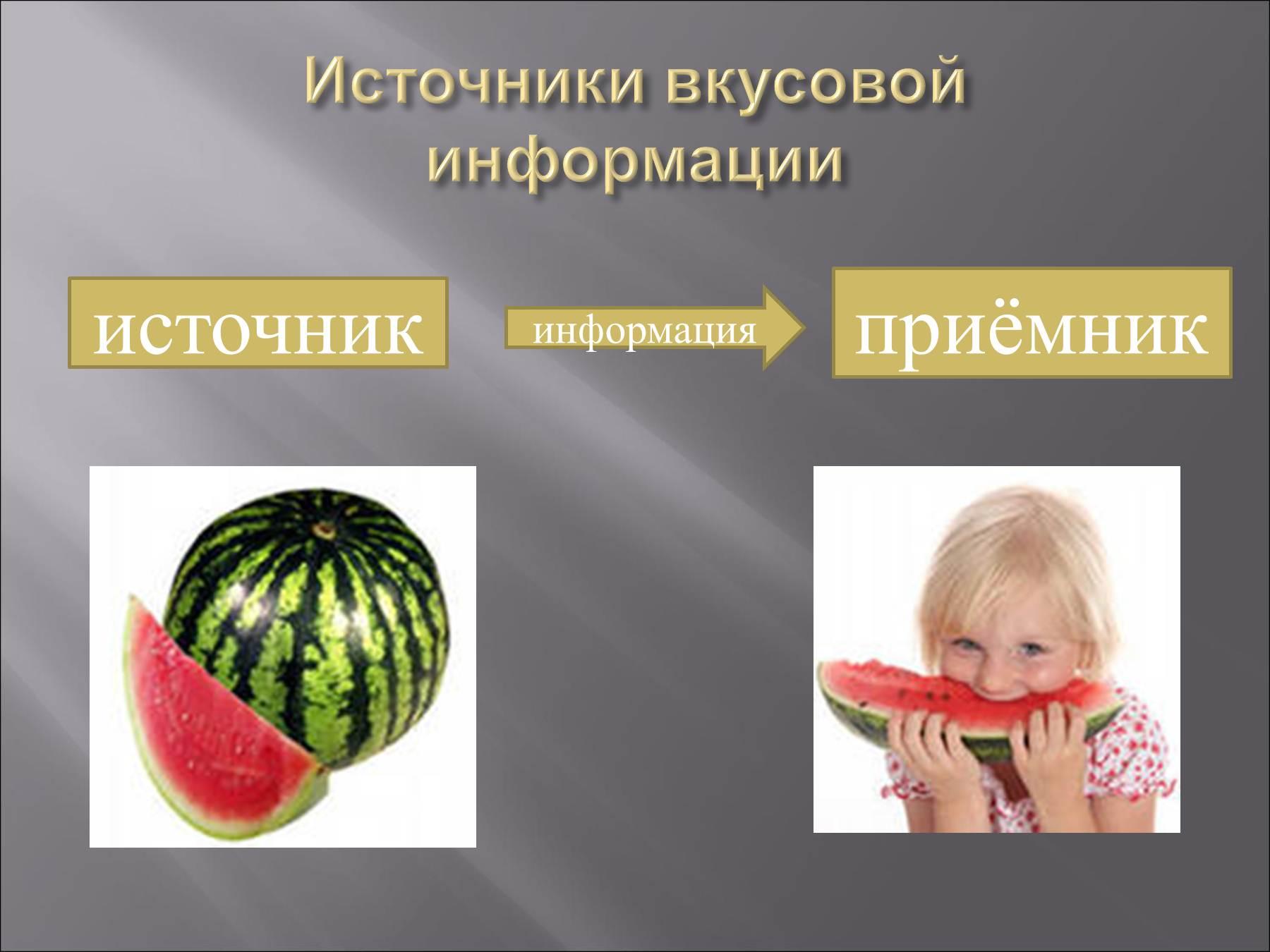 В общей схеме передачи информации между источником и приемником информации должен существовать