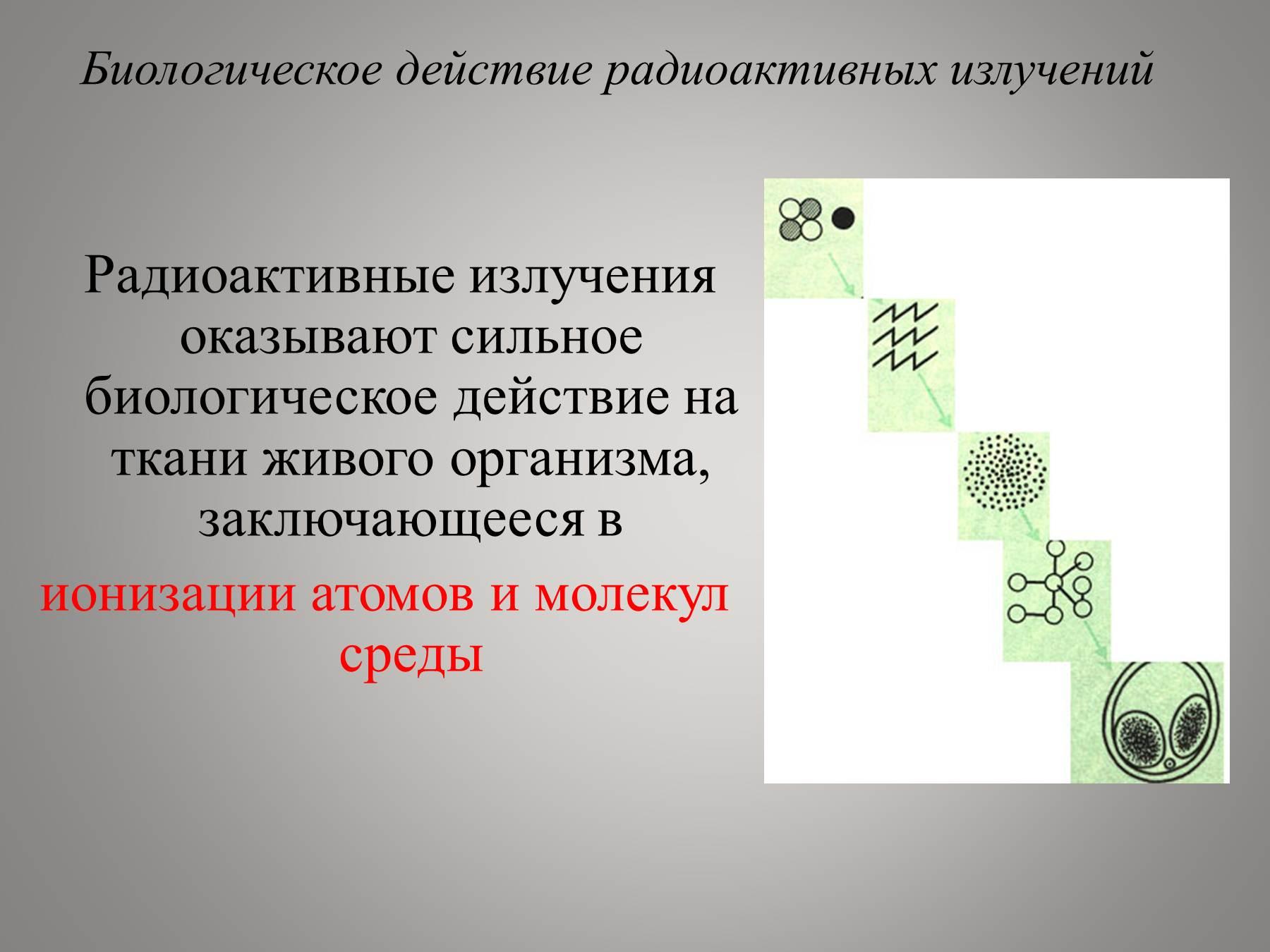 биологическое действие радиоактивного излучения страховщиков России (РСА)