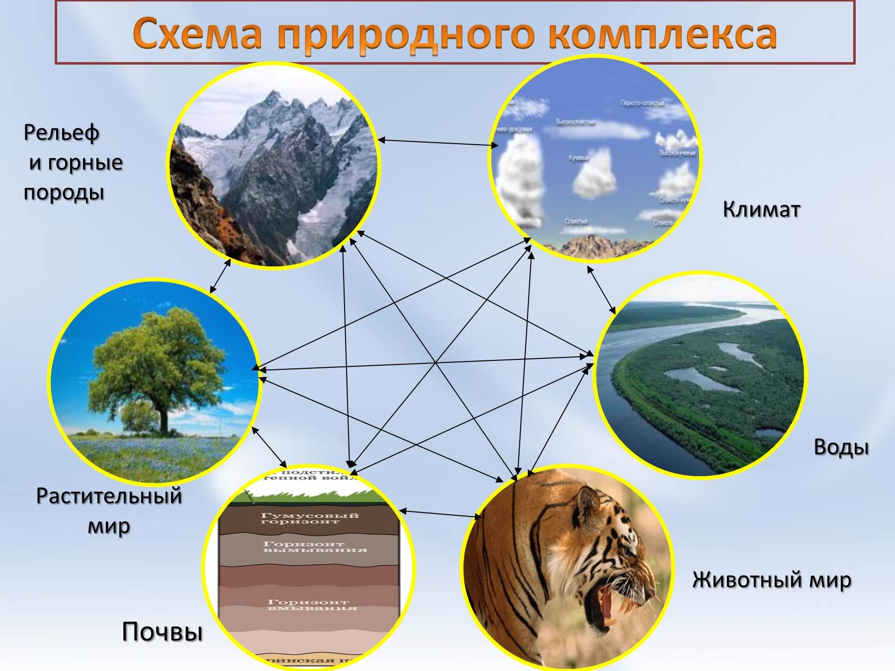 Составьте географическое описание среднего урала определите особенности его географического положения