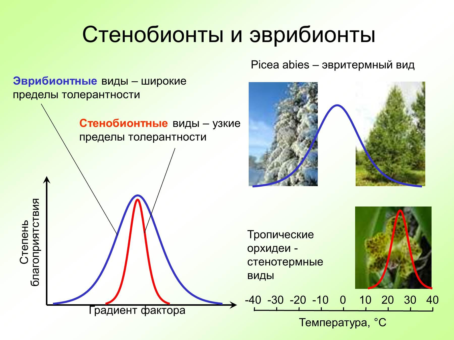 Схема классификация экологических факторов
