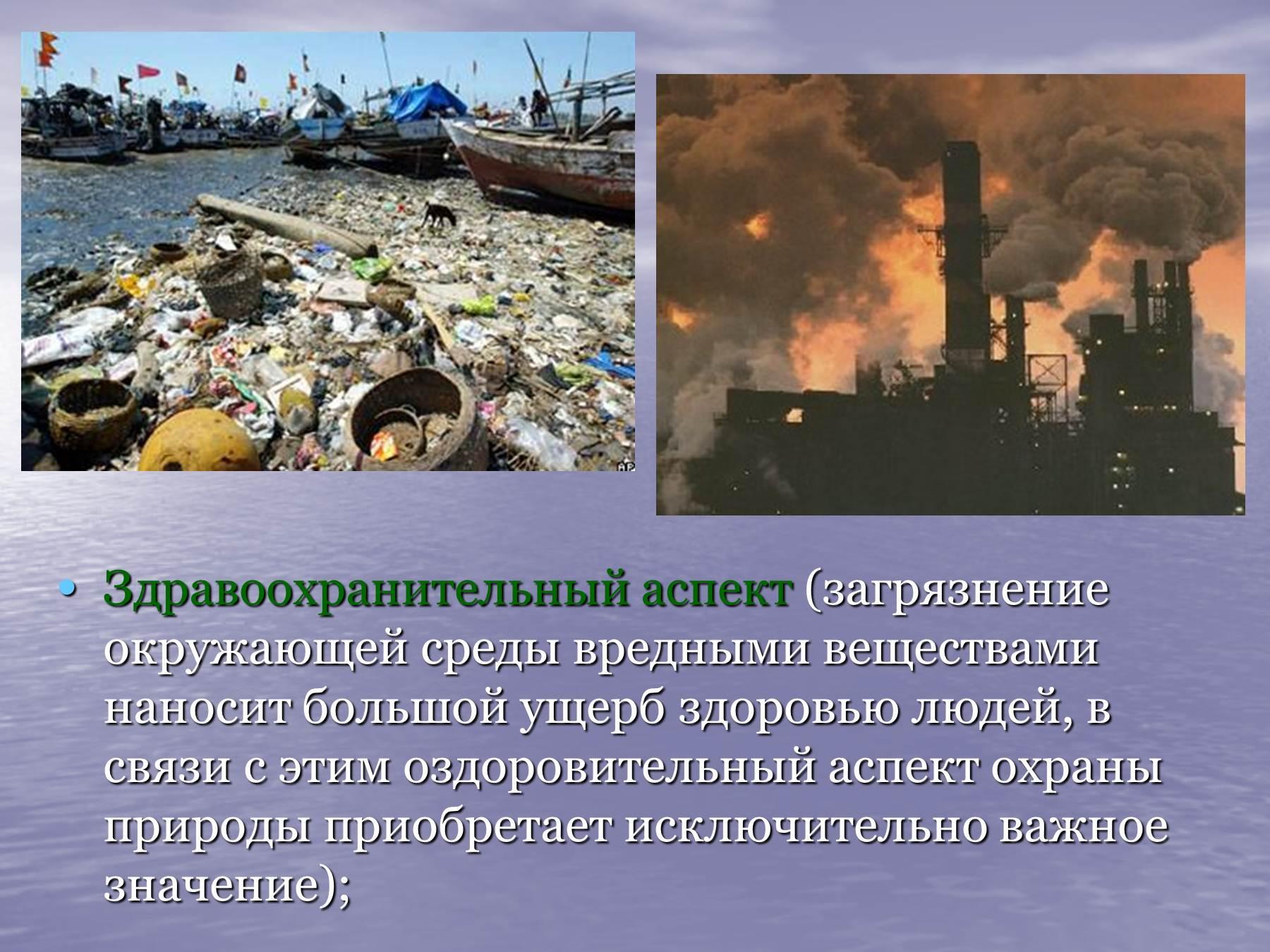 фото реферат экологические проблемы сказать