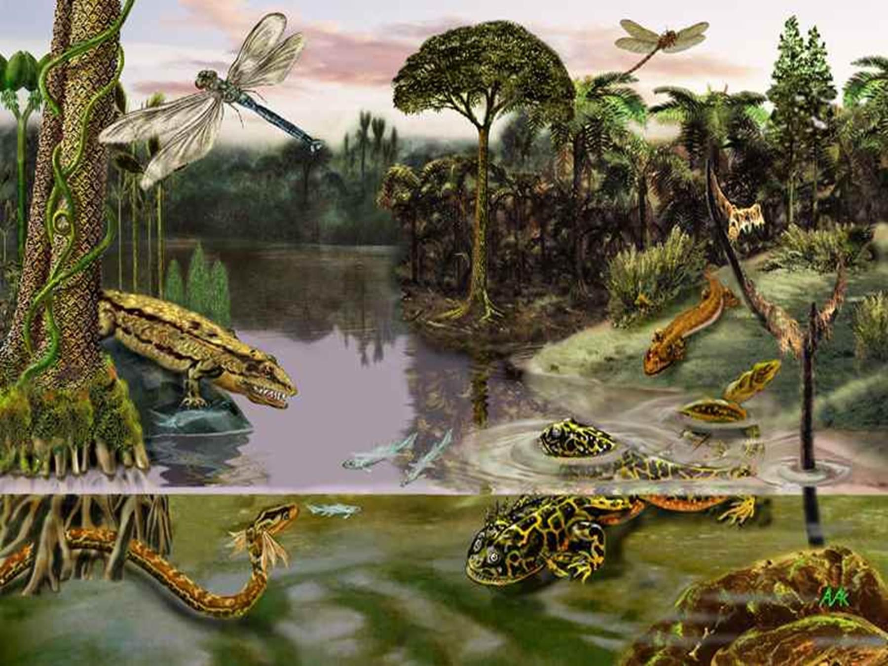 палеозойская эра с картинками них постоянно